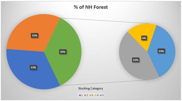 NH forest stocking
