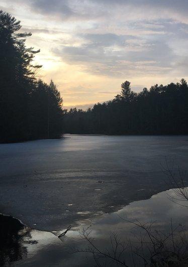 College_Woods_Pond
