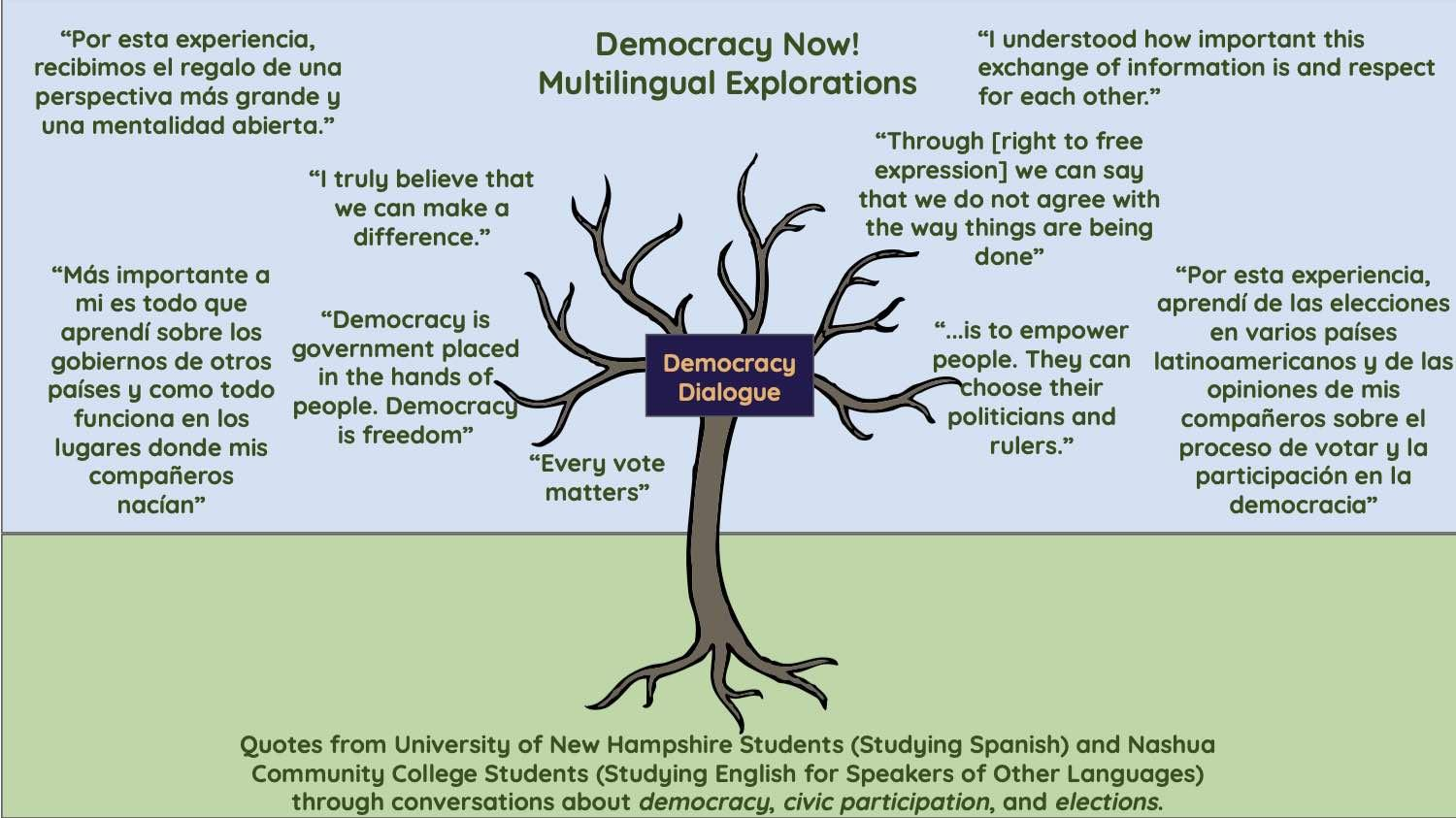 powerpoint slide, tree with many branches representing many groups involved in democracy now