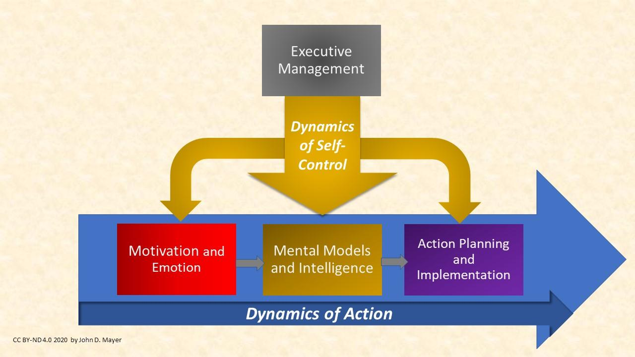 Personality  Dynamics Using the Systems Set