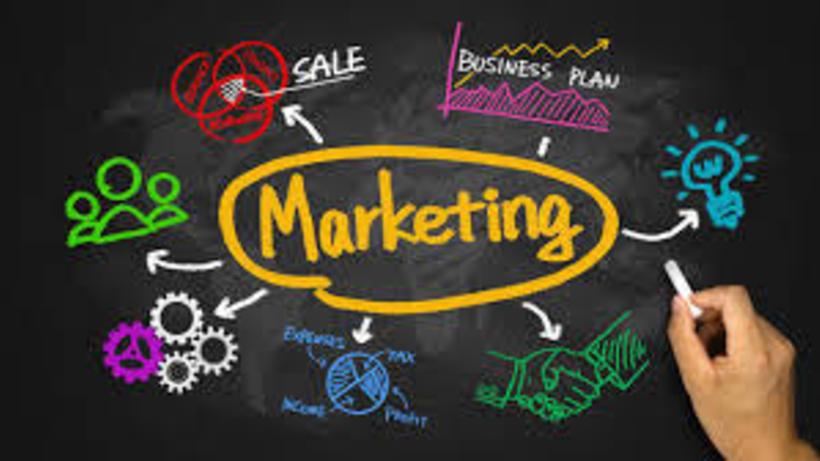 Marketing Major