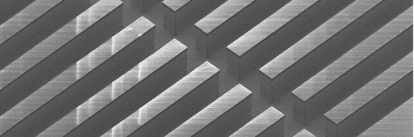 SEM image of combined chip