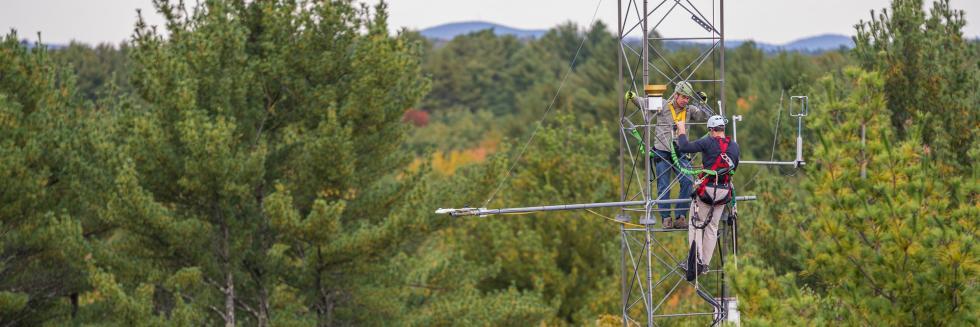 Repairing CO2 sensors on the Thompson Farm, NH flux tower
